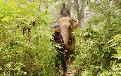 Live from the Himalayas (4): Fair Trails Exploration