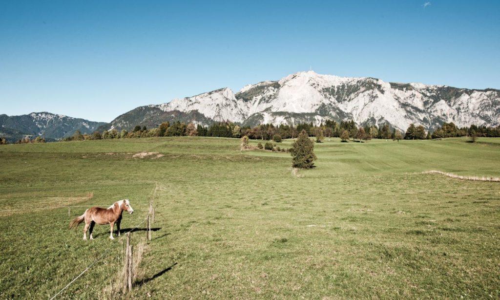 Panoramaweg Südalpen Panorama am Hochplateau