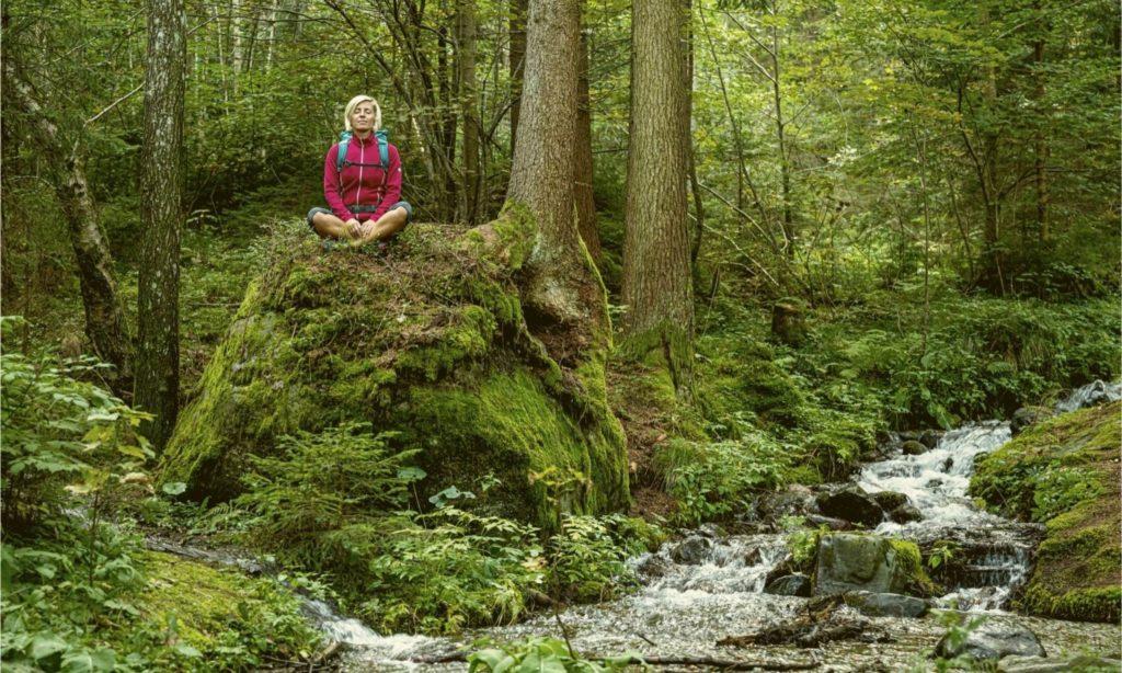 Bernstein Trail Landschaft
